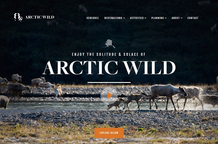 Arcticwild-best-travel-website