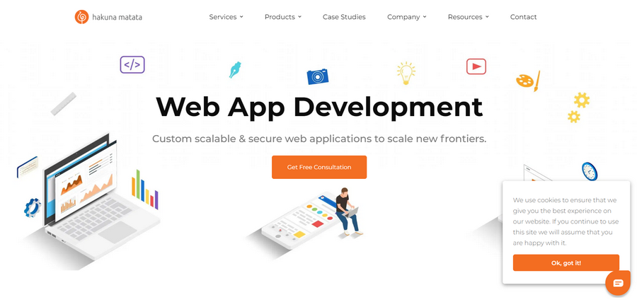 Web Application Development Companies Hakuna Matata